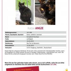 Angie wird sehnlichst vermisst!