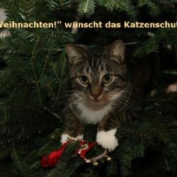 Frohe Weihnachten und alles Gute zum neuen Jahr!