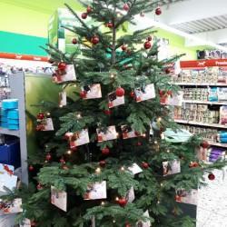 Oh Tannenbaum – Weihnachts-Wunschbäume bei Fressnapf