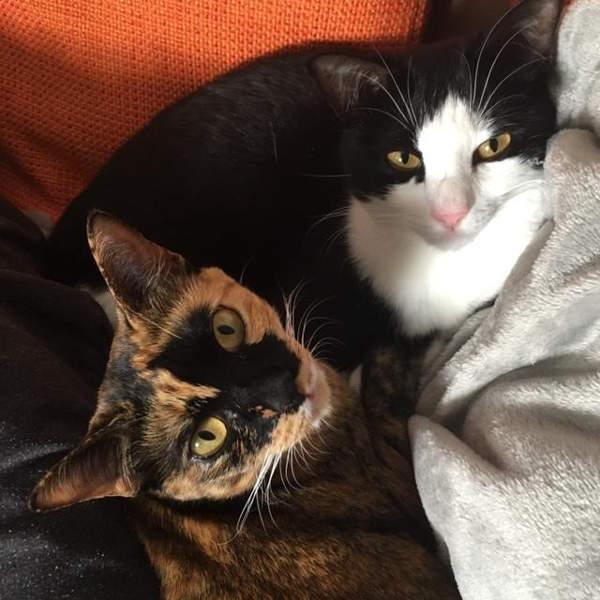 Lila und Miki