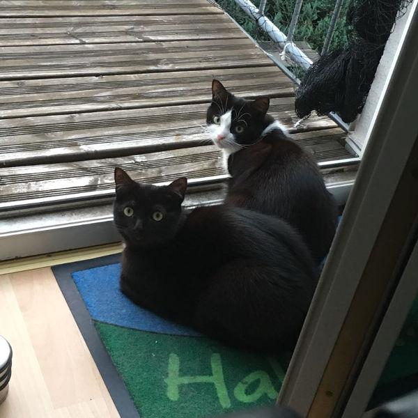Susi und Nicki