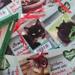 Tierisch engagiert: Weihnachtswunschbäume in sieben Fressnapf-Märkten