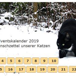 Adventskalender 2019 – Die Katzen haben ihre Wunschzettel diktiert
